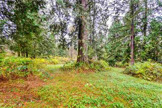 Photo 5: 11092 248 Street in Maple Ridge: Thornhill MR House for sale : MLS®# R2200717