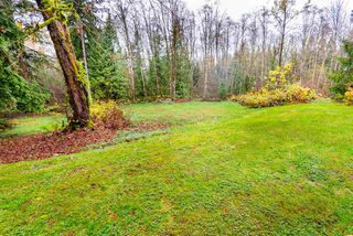 Photo 7: 11092 248 Street in Maple Ridge: Thornhill MR House for sale : MLS®# R2200717