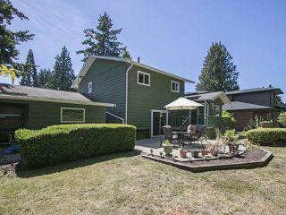 Photo 17: 4843 7A Avenue in Delta: Tsawwassen Central House for sale (Tsawwassen)  : MLS®# R2218386