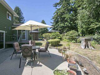Photo 18: 4843 7A Avenue in Delta: Tsawwassen Central House for sale (Tsawwassen)  : MLS®# R2218386