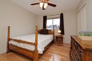 Photo 15: 12455 205 STREET in Maple Ridge: Northwest Maple Ridge House for sale : MLS®# R2238685