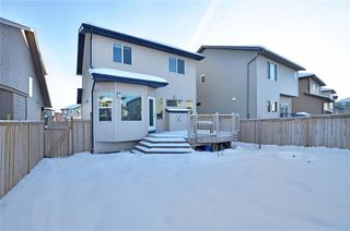 Photo 30: 739 NEW BRIGHTON Drive SE in Calgary: New Brighton House for sale : MLS®# C4175225