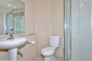 Photo 27: 739 NEW BRIGHTON Drive SE in Calgary: New Brighton House for sale : MLS®# C4175225