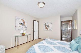 Photo 21: 739 NEW BRIGHTON Drive SE in Calgary: New Brighton House for sale : MLS®# C4175225