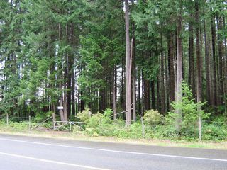 Photo 1: LT 4 Pritchard Rd in COMOX: CV Comox (Town of) Other for sale (Comox Valley)  : MLS®# 782824