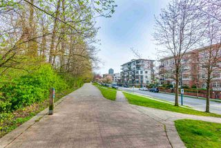 Photo 17: R2259795 - 104 2336 WHYTE AVE, PORT COQUITLAM CONDO