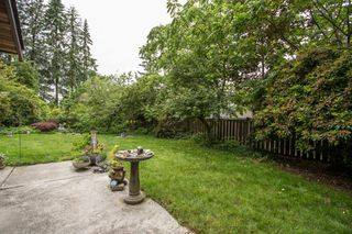 Photo 17: 21295 124 Avenue in Maple Ridge: West Central House for sale : MLS®# R2282944