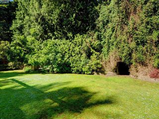 Photo 13: 5168 Del Monte Avenue in VICTORIA: SE Cordova Bay Single Family Detached for sale (Saanich East)  : MLS®# 395359