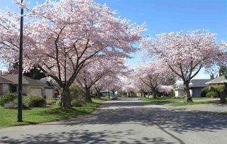 "Photo 3: 12973 19 Avenue in Surrey: Crescent Bch Ocean Pk. House for sale in ""Ocean Park Amble Green West"" (South Surrey White Rock)  : MLS®# R2306445"