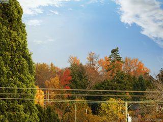 Photo 21: 406 3614 Richmond Road in VICTORIA: SE Mt Tolmie Condo Apartment for sale (Saanich East)  : MLS®# 401899