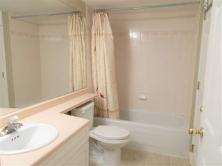 "Photo 12: 304 20556 113 Avenue in Maple Ridge: Southwest Maple Ridge Condo for sale in ""Southwest Maple Ridge"" : MLS®# R2337190"