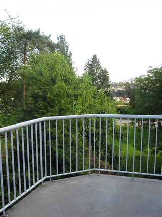 "Photo 6: 304 20556 113 Avenue in Maple Ridge: Southwest Maple Ridge Condo for sale in ""Southwest Maple Ridge"" : MLS®# R2337190"