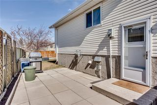 Photo 44: 93 ABERDARE Road NE in Calgary: Abbeydale Detached for sale : MLS®# C4240941