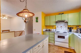 Photo 16: 93 ABERDARE Road NE in Calgary: Abbeydale Detached for sale : MLS®# C4240941