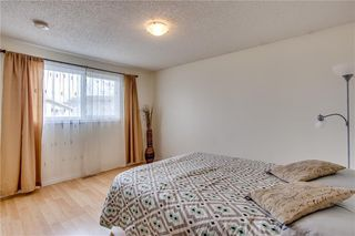 Photo 23: 93 ABERDARE Road NE in Calgary: Abbeydale Detached for sale : MLS®# C4240941
