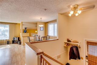 Photo 20: 93 ABERDARE Road NE in Calgary: Abbeydale Detached for sale : MLS®# C4240941