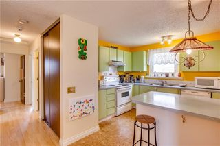 Photo 19: 93 ABERDARE Road NE in Calgary: Abbeydale Detached for sale : MLS®# C4240941