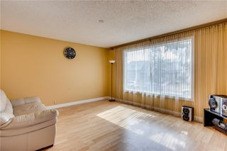 Photo 5: 93 ABERDARE Road NE in Calgary: Abbeydale Detached for sale : MLS®# C4240941