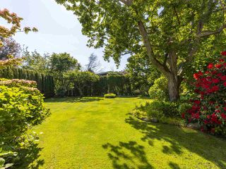 """Photo 18: 6145 COLLINGWOOD Street in Vancouver: Kerrisdale House for sale in """"SOUTHLANDS"""" (Vancouver West)  : MLS®# R2376095"""