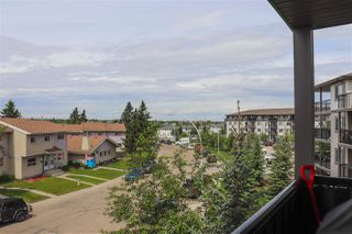 Photo 27: 334 1180 HYNDMAN Road in Edmonton: Zone 35 Condo for sale : MLS®# E4160789