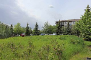 Photo 30: 334 1180 HYNDMAN Road in Edmonton: Zone 35 Condo for sale : MLS®# E4160789