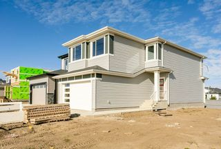 Photo 29: 966 BERG Place: Leduc House for sale : MLS®# E4176046