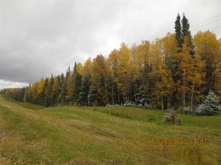 Photo 5: Range Road 183 Township Road 534A: Rural Yellowhead Rural Land/Vacant Lot for sale : MLS®# E4176523