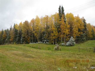 Photo 3: Range Road 183 Township Road 534A: Rural Yellowhead Rural Land/Vacant Lot for sale : MLS®# E4176523
