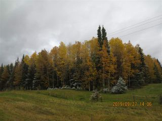 Photo 1: Range Road 183 Township Road 534A: Rural Yellowhead Rural Land/Vacant Lot for sale : MLS®# E4176523