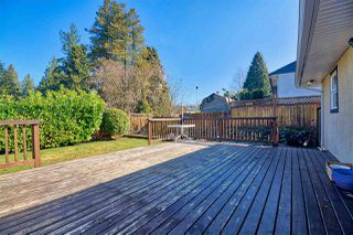 Photo 18: 14967 KEW Drive in Surrey: Bolivar Heights House for sale (North Surrey)  : MLS®# R2447447