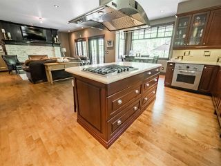 Photo 11: 14 52224 RANGE ROAD 231: Rural Strathcona County House for sale : MLS®# E4199687