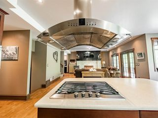 Photo 9: 14 52224 RANGE ROAD 231: Rural Strathcona County House for sale : MLS®# E4199687