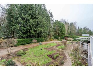 """Photo 24: 24322 55 Avenue in Langley: Salmon River House for sale in """"Salmon River"""" : MLS®# R2522391"""
