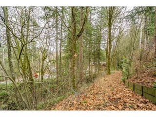 """Photo 37: 24322 55 Avenue in Langley: Salmon River House for sale in """"Salmon River"""" : MLS®# R2522391"""