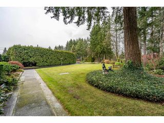 """Photo 4: 24322 55 Avenue in Langley: Salmon River House for sale in """"Salmon River"""" : MLS®# R2522391"""