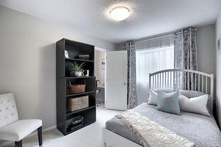 Photo 31: 166 Walden Park SE in Calgary: Walden Detached for sale : MLS®# A1054574