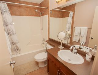 Photo 21: 1266 MCALLISTER Way in Edmonton: Zone 55 House for sale : MLS®# E4225050