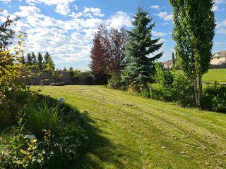 Photo 50: 1266 MCALLISTER Way in Edmonton: Zone 55 House for sale : MLS®# E4225050