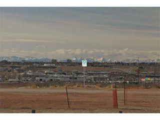 Photo 26: 724 LYSANDER Drive SE in Calgary: Lynnwood_Riverglen House for sale : MLS®# C3656384