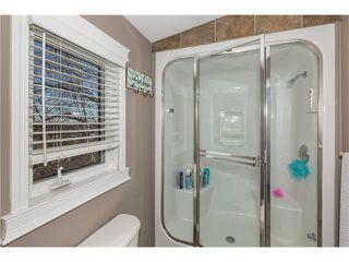 Photo 16: 1134 LAKE CHRISTINA Way SE in Calgary: Lake Bonavista House for sale : MLS®# C4051851