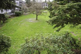 "Photo 12: 226 8860 NO. 1 Road in Richmond: Boyd Park Condo for sale in ""APPLE GREENE PARK"" : MLS®# R2151839"