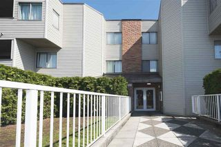 """Photo 4: 107 615 NORTH Road in Coquitlam: Coquitlam West Condo for sale in """"NORFOLK MANOR"""" : MLS®# R2152631"""