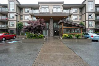 "Photo 1: 121 30515 CARDINAL Avenue in Abbotsford: Abbotsford West Condo for sale in ""TAMARID"" : MLS®# R2177267"