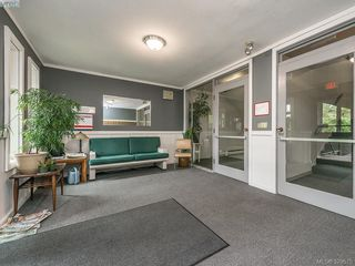 Photo 12: 112 1975 Lee Avenue in VICTORIA: Vi Jubilee Condo Apartment for sale (Victoria)  : MLS®# 379575