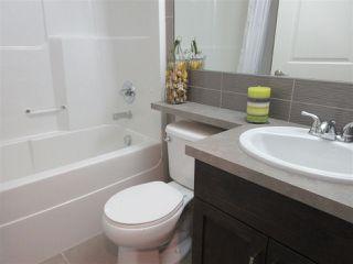 Photo 25: 18108 75 Street in Edmonton: Zone 28 House for sale : MLS®# E4144176