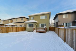 Photo 29: 41 HEWITT Circle: Spruce Grove House for sale : MLS®# E4144203