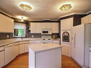 Photo 5: 4 Heartwood Close: Stony Plain House for sale : MLS®# E4148062