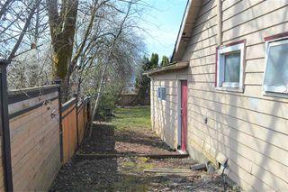 Photo 5: 20420 LORNE Avenue in Maple Ridge: Southwest Maple Ridge House for sale : MLS®# R2351311