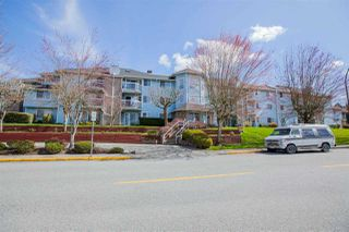 "Photo 1: 312 11510 225 Street in Maple Ridge: East Central Condo for sale in ""RIVERSIDE"" : MLS®# R2355823"