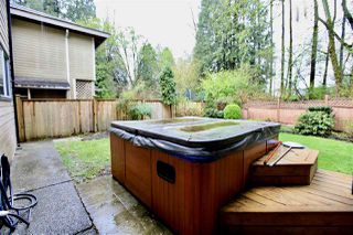 "Photo 20: 16130 BROOKSIDE Grove in Surrey: Fraser Heights House for sale in ""Fraser Glen"" (North Surrey)  : MLS®# R2355438"